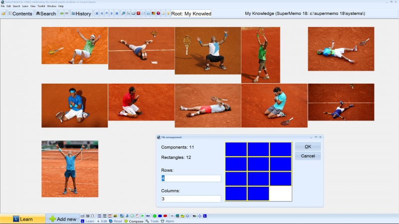 SuperMemo: Tiling Rafael Nadal pictures with component tiling assistance